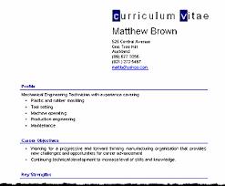 curriculum vitae examples new zealand