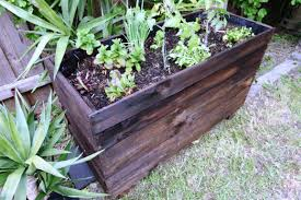 garden boxes ideas raised planter boxes ideas u2014 indoor outdoor homes how to build