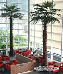 palm tree canada popular indoor or outdoor decorative artificial