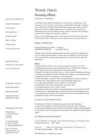 Volunteer Service On Resume Amazing What Volunteer Work Looks Good On Resume 35 For Your