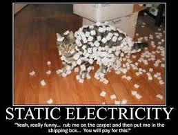 Electricity Meme - static electricity cat meme cat planet cat planet