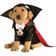 pet costumes classic monsters pet costume x large dracula