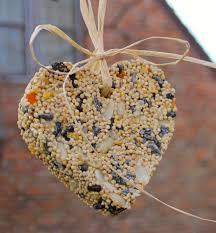 bird seed ornaments with gelatin bird food top photos