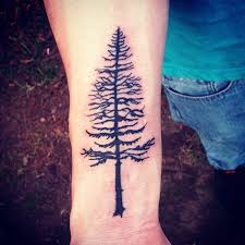 awesome detailed pine tree black ink forearm