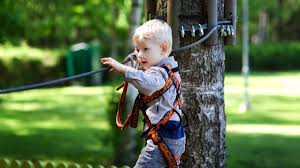 backyard zip line kits outdoor goods