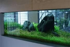 Aquascape Takashi Amano Takashi Amano Ada Workshop U2013 Videos Aquarium Recipeapart