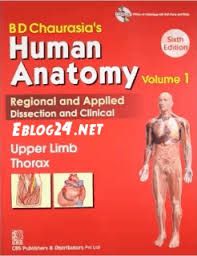 Human Anatomy And Physiology By Elaine Marieb Pdf Human Biology 14 Edition By Sylvia Mader Michael Windelspecht