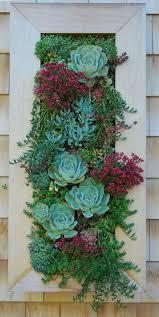 best 25 vertical garden wall ideas on pinterest wall gardens