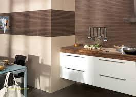 marron cuisine carrelage ceramique couleur pour carrelage salle de bain meilleur de