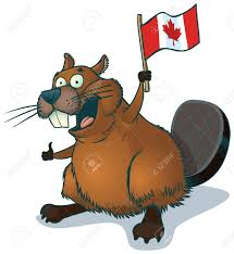 beaver isolated stock photos u0026 pictures royalty free beaver