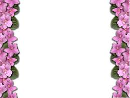 halloween paper border flower borders free download clip art free clip art on