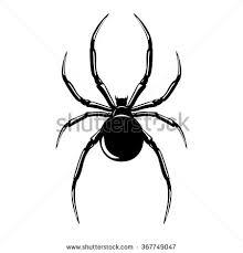 black widow spider vector stock vector 56649004 shutterstock