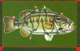 fly fishing flyfishing cards greeting cards and
