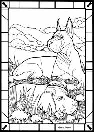 dane dog coloring pages coloring