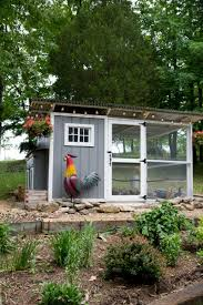 Backyard Poultry In India How To Start Raising Backyard Chickens In 7 Simple Steps Wholefully