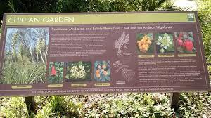 Botanical Gardens Highland Park Andrean Cloud Forest Picture Of San Francisco Botanical Garden