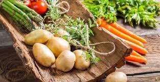 vegetarische k che vegetarische rezepte gutekueche at