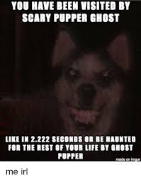 Scary Ghost Meme - you have been visited by scary pupper ghost like in 2222 seconds or