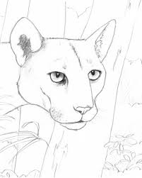 coloring book download pdf link endangered animals art class