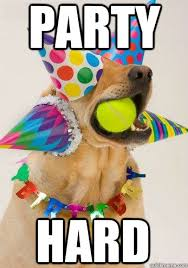 Birthday Dog Meme - birthday dog memes quickmeme