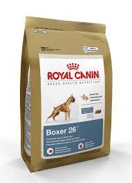 8 month old boxer dog weight amazon com royal canin dry dog food boxer 26 formula 33 pound