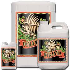 piranha advanced nutrients advanced nutrients piranha dünger advanced nutrients