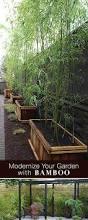 Backyard Easy Landscaping Ideas by 4126 Best Garden Ideas Images On Pinterest Gardening Organic