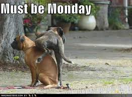 Disgusting Monday Memes - 20 i hate monday funny pictures funny monday pictures funny