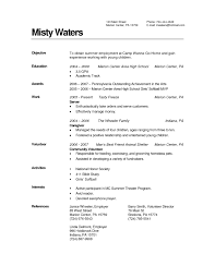 Child Care Resume Examples by Sample Childcare Resume Free Resume Example And Writing Download