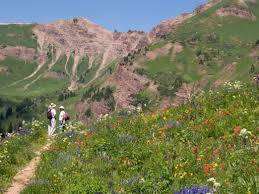 Current Conditions Mount Zirkel Wilderness Area Colorado Six Amazing Wildflower Hikes In Colorado