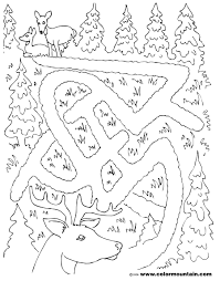 deer maze activity coloring sheet create a printout or activity