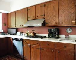 Kitchen Cabinets Nz by Captivating Hinges For Inset Kitchen Cabinet Doors Tags Hinges