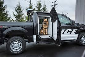 the 2016 ford f 150 special service vehicle is ready to drive the