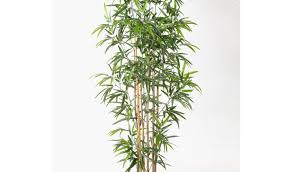 online stores for home decor plant beautiful tall artificial plants in is a one stop shop for