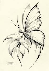 12 best butterflies to draw for haya images on pinterest