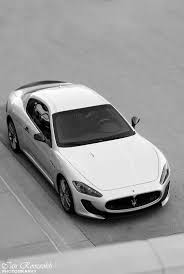 maserati gold logo 361 best maserati images on pinterest car cars motorcycles and