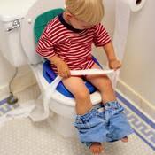 rehausseur siege wc rehausseur wc prix et infos sur le réhausseur wc