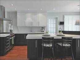 Top Kitchen Colors 2017 Kitchen Kitchen Design Gallery Cool Kitchen Designs Top Kitchen