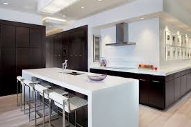Modern Kitchen Designs 2012 by Interior Modern Kitchen Design With Black Timberlake Cabinets And