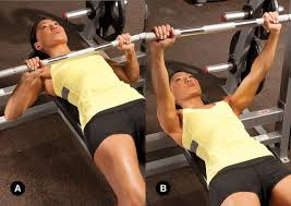 Tips To Increase Bench Press Best 25 Bench Press Workout Ideas On Pinterest Bench Press