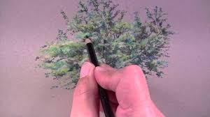 how to draw a tree with colored pencils