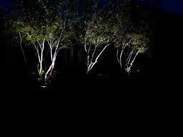 led landscape tree lights landscape lighting ideas