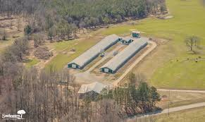 poultry farm listings southeastern land group