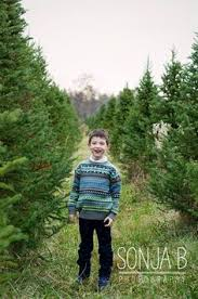 christmas tree farm engagement pictures by sonja b photography in
