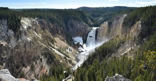 yellowstone national park worker dies falling from canyon u0027s edge