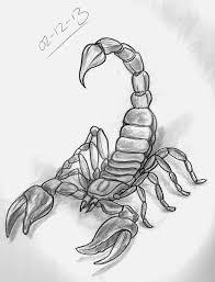 drawn scorpion tatoo pencil and in color drawn scorpion tatoo