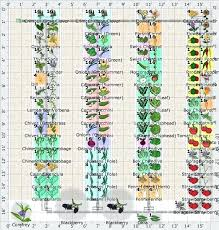 Companion Planting Garden Layout Companion Flowers For Vegetable Garden Best Companion Planting And
