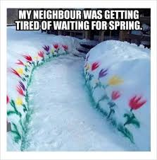 Funny Snow Memes - neighbor s spring funny memes dailyomgs