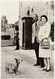 The Queen S Corgi Papergreat Update This Royal Dog Was A Welsh Corgi Named Sugar