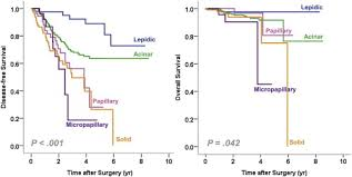 lepidic pattern meaning micropapillary and solid subtypes of invasive lung adenocarcinoma